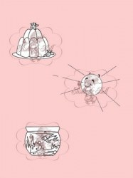 **Tampons clear DESSERT MR SUN AND FISHBOWL - Belles'n whistles