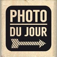 Tampon bois CARRÉ PHOTO DU JOUR - Florilèges
