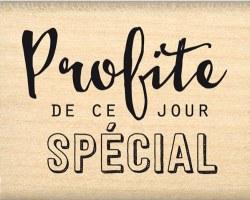 {Capsule mai 2016}Tampon bois PROFITE DE CE JOUR - Florilèges