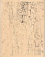 Tampon bois CRAQUELEE - Florilèges