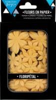Fleurs Floripetal AMBRE - Florilèges