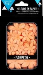 Fleurs Floripetal CLEMENTINE - Florilèges