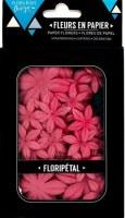 Fleurs Floripetal GARANCE - Florilèges