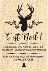 {Capsule novembre 2016} Tampon bois NOEL AUX 1000 ETOILES - Florilèges