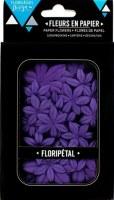 Fleurs Floripetal MYRTILLE - Florilèges