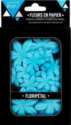 Fleurs Floripetal AIGUE-MARINE - Florilèges