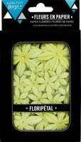 Fleurs Floripetal CELERI - Florilèges