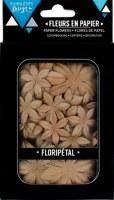 Fleurs Floripetal CAPPUCCINO - Florilèges