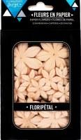 Fleurs Floripetal SAHARA - Florilèges