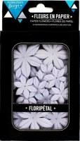 Fleurs Floripetal JACINTHE - Florilèges