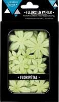 Fleurs Floripetal ALOE VERA - Florilèges