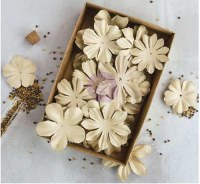 Boxed flowers RODANTHE II + perles -Prima