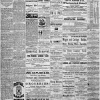 {Antique book}Newsprint - Bazzill