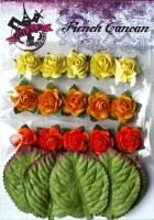 Mini roses ORANGE - Ohlala