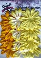 Fleurs LONGS PETALES JAUNE - Ohlala