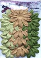 Fleurs LONGS PETALES NATUREL VERT - Ohlala