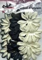 Fleurs LONGS PETALES NOIR - Ohlala