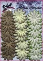 Petites fleurs 12 pétales VERT BRUN - Ohlala
