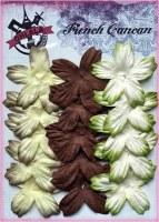 Petites fleurs 5 pétales VERT BRUN - Ohlala