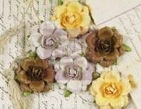 Fleurs TEA ROSES QUARRY - Prima