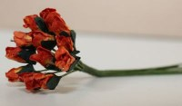 Bouquet 12 PETITE ROSEBUD APRICOT