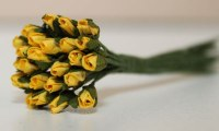 Bouquet 24 MINI ROSEBUD YELLOW