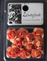 10 fleurs SHABBY ORANGE - Zenatytude