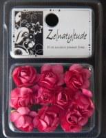 10 fleurs SHABBY FUSHIA - Zenatytude