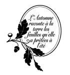 {Rêver l'automne}Tampon clear L'AUTOMNE RACONTE - Lorelai