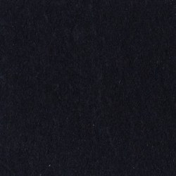 Bazzill BLACK lisse