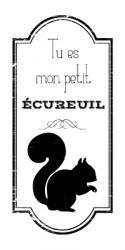 {Rêver l'automne}Tampon clear MON PETIT ÉCUREUIL - Lorelai