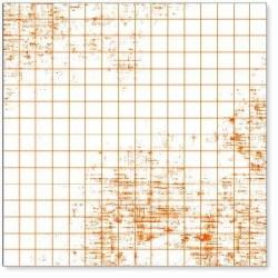Transparent 3/4 GRAPH ORANGE - Hambly