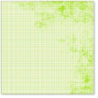 Transparent MINI GRAPH LIME GREEN - Hambly